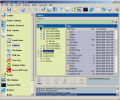 Falcove Web Vulnerability Scanner Screenshot 0