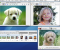 Morpheus Photo Animation Suite Mac Screenshot 0