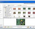 FileRestore for Networks Screenshot 0